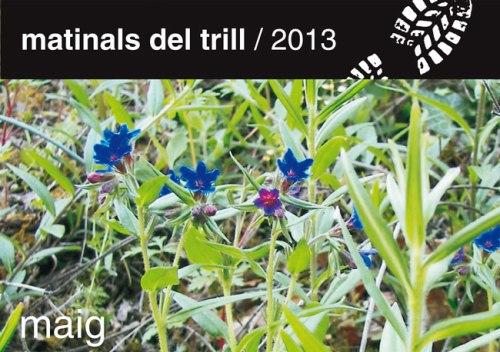 MATINALS-DEL-TRILL-2013-1