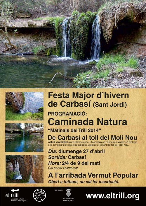 CARTELL-CARBASÍ