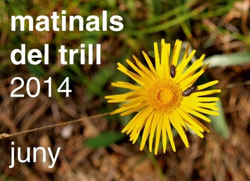 MATINALS-DEL-TRILL-2014