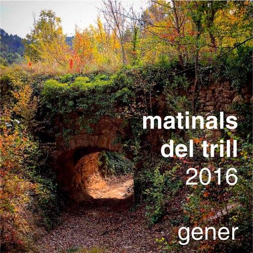 MATINALS-DEL-TRILL-2016